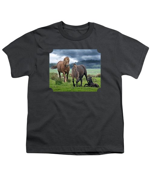 Dartmoor Ponies Youth T-Shirt by Gill Billington