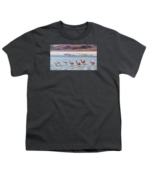 Flamingos Youth T-Shirt by Sandy Taylor