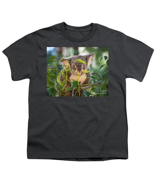Koala Leaves Youth T-Shirt by Jamie Pham