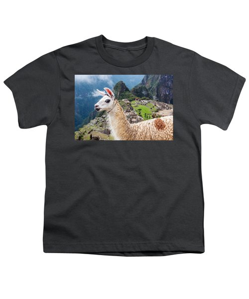 Llama At Machu Picchu Youth T-Shirt by Jess Kraft