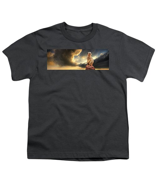 Sentry Duty Youth T-Shirt by Meirion Matthias