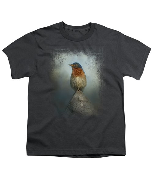 The Highest Point Youth T-Shirt by Jai Johnson