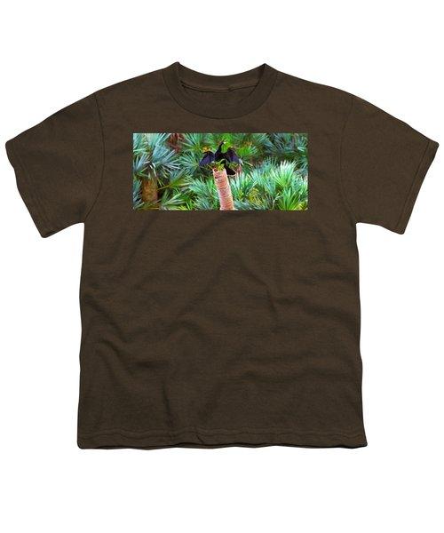 Anhinga Anhinga Anhinga On A Tree Youth T-Shirt by Panoramic Images