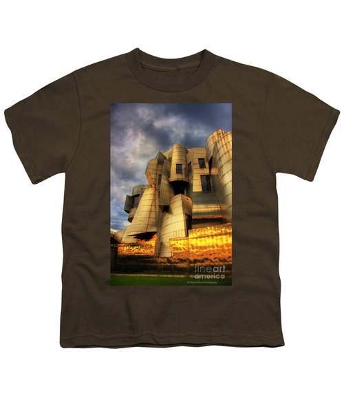 Minneapolis Skyline Photography Weisman Museum Youth T-Shirt by Wayne Moran