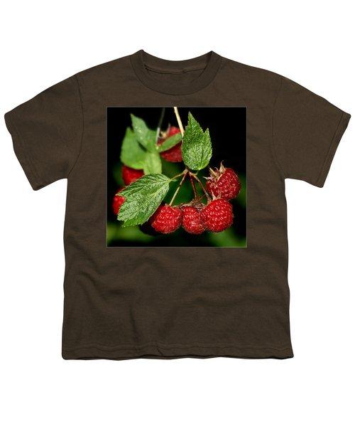 Raspberries Youth T-Shirt by Nikolyn McDonald