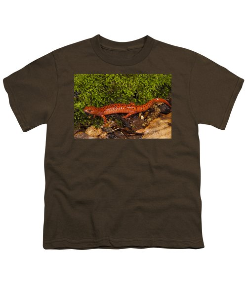 Red Salamander Pseudotriton Ruber Youth T-Shirt by Pete Oxford