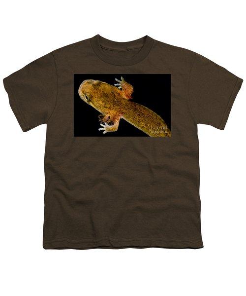California Giant Salamander Larva Youth T-Shirt by Dant� Fenolio