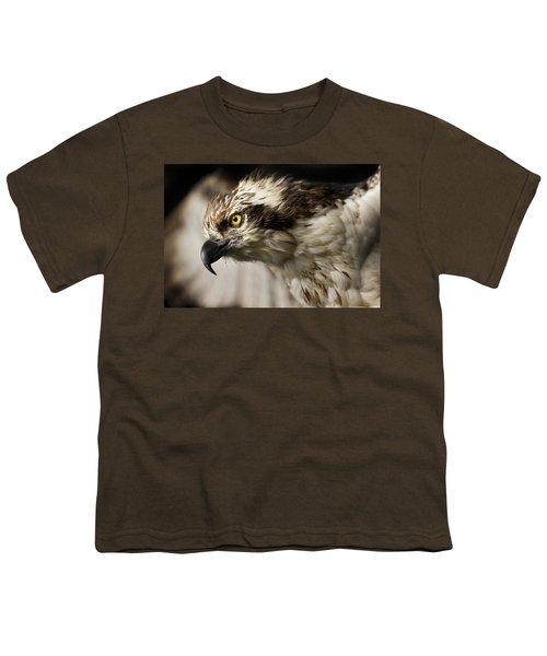 Osprey Youth T-Shirt by Adam Romanowicz