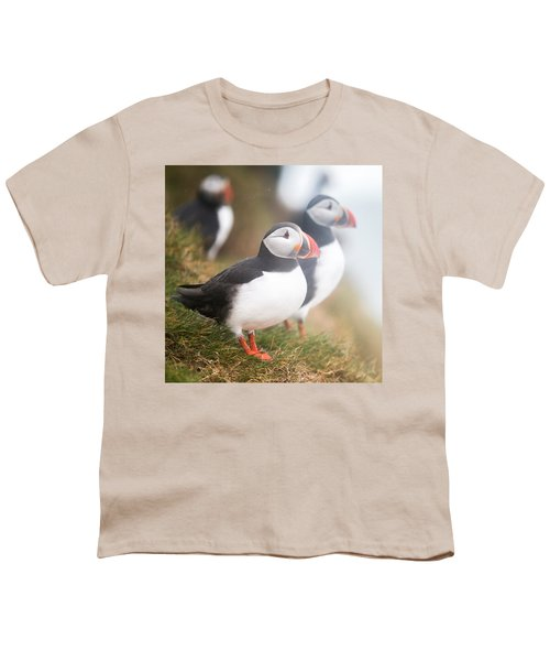 Atlantic Puffins Fratercula Arctica Youth T-Shirt by Panoramic Images