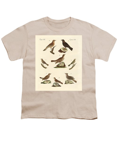 Different Kinds Of Larks Youth T-Shirt by Splendid Art Prints