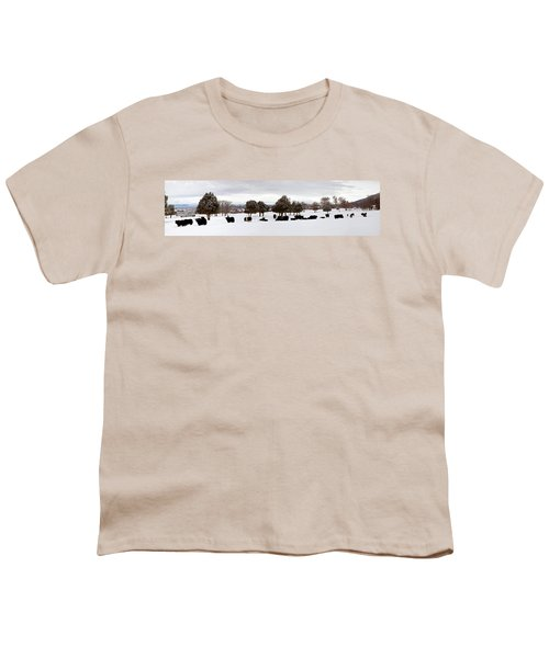 Herd Of Yaks Bos Grunniens On Snow Youth T-Shirt by Panoramic Images