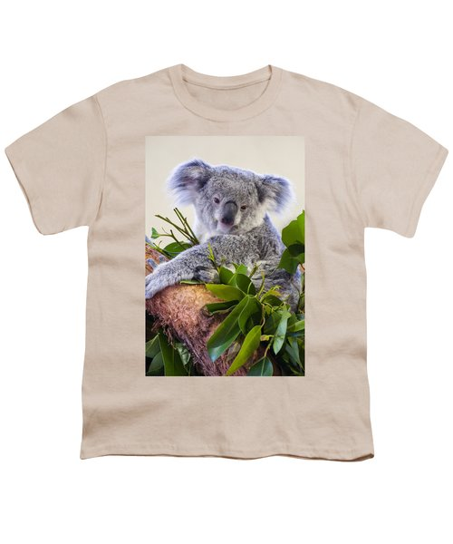 Koala On Top Of A Tree Youth T-Shirt by Chris Flees