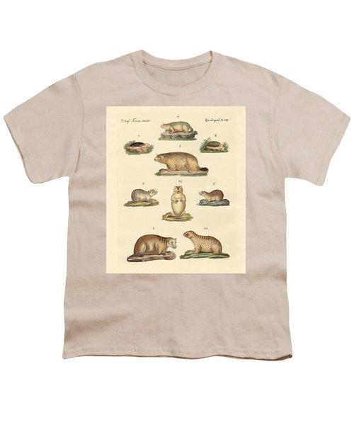 Marmots And Moles Youth T-Shirt by Splendid Art Prints
