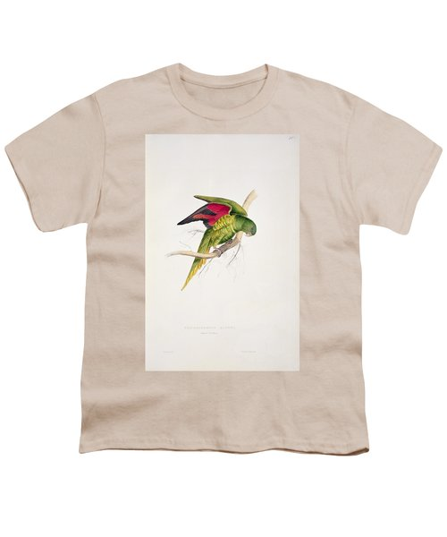 Matons Parakeet Youth T-Shirt by Edward Lear