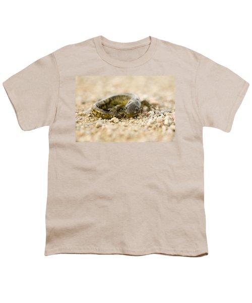 Close Up Tiger Salamander Youth T-Shirt by Mark Duffy