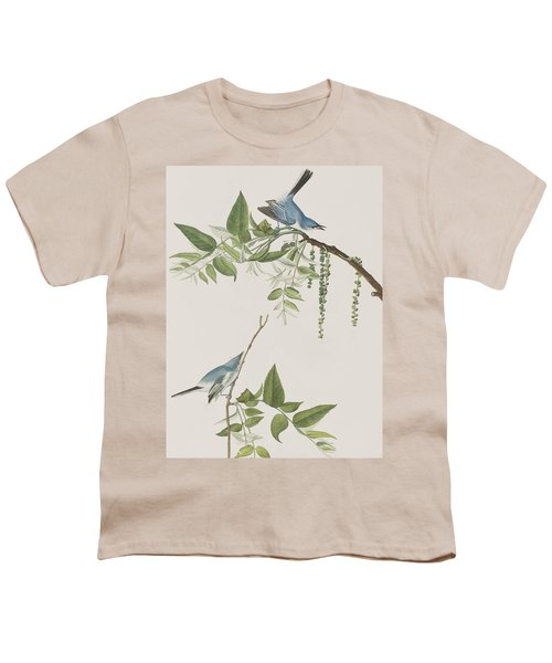 Blue Grey Flycatcher Youth T-Shirt by John James Audubon