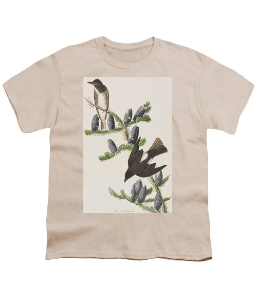 Olive Sided Flycatcher Youth T-Shirt by John James Audubon