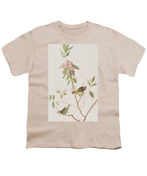 Ruby Crowned Wren Youth T-Shirt by John James Audubon