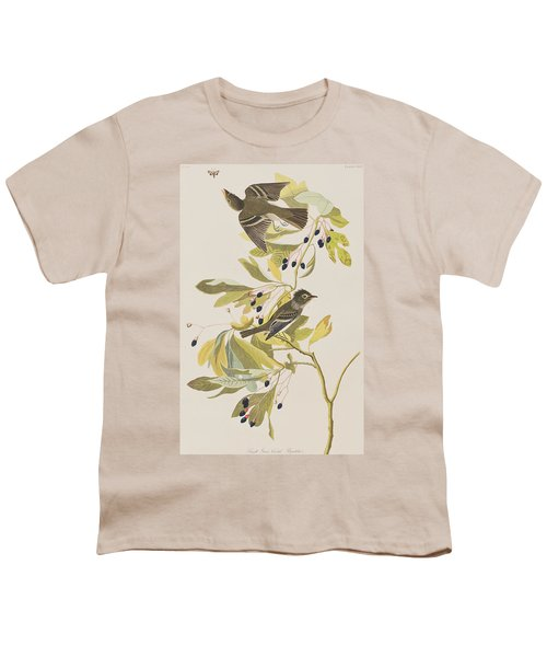 Small Green Crested Flycatcher Youth T-Shirt by John James Audubon