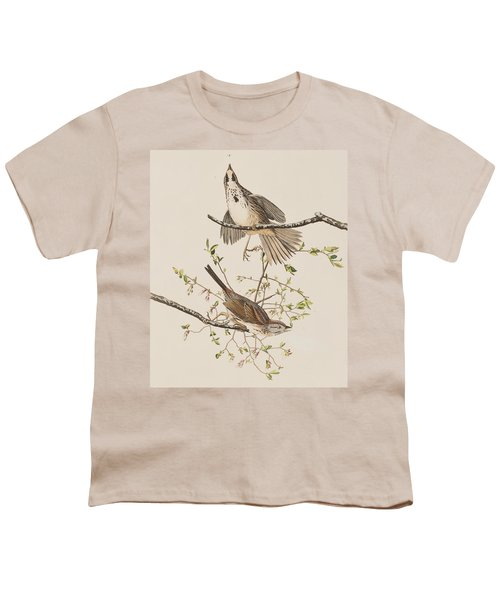 Song Sparrow Youth T-Shirt by John James Audubon