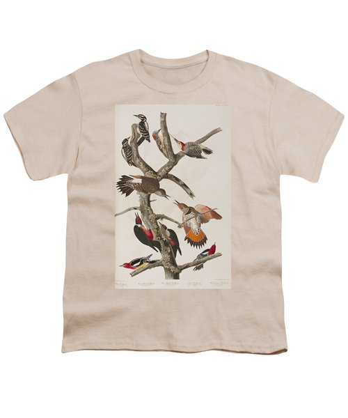 Woodpeckers Youth T-Shirt by John James Audubon