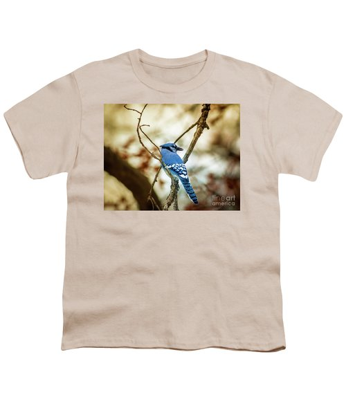 Blue Jay Youth T-Shirt by Robert Frederick