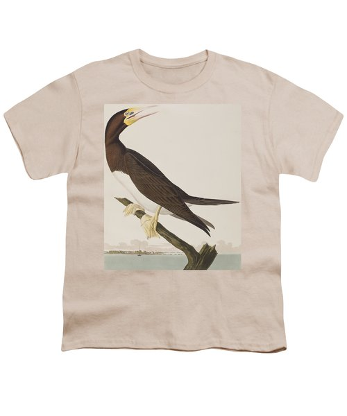 Booby Gannet   Youth T-Shirt by John James Audubon