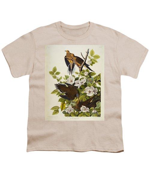 Carolina Turtledove Youth T-Shirt by John James Audubon