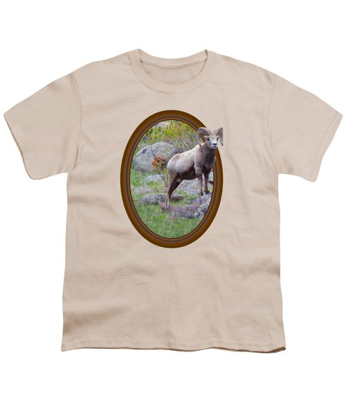 Colorado Bighorn Youth T-Shirt by Shane Bechler