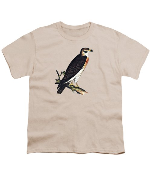 Hawk Swainsons Hawk Youth T-Shirt by Movie Poster Prints