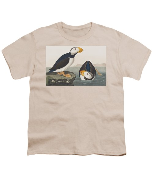 Large Billed Puffin Youth T-Shirt by John James Audubon