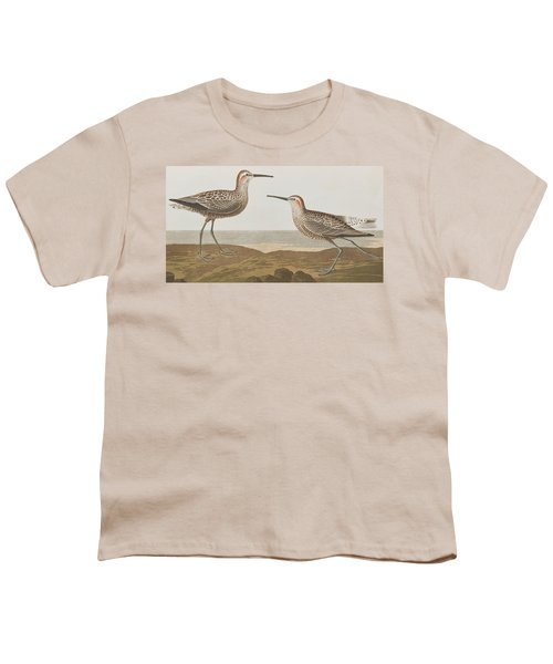 Long-legged Sandpiper Youth T-Shirt by John James Audubon