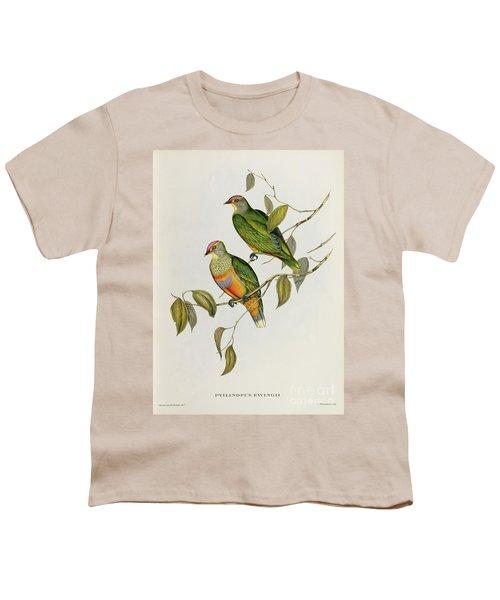 Ptilinopus Ewingii Youth T-Shirt by John Gould