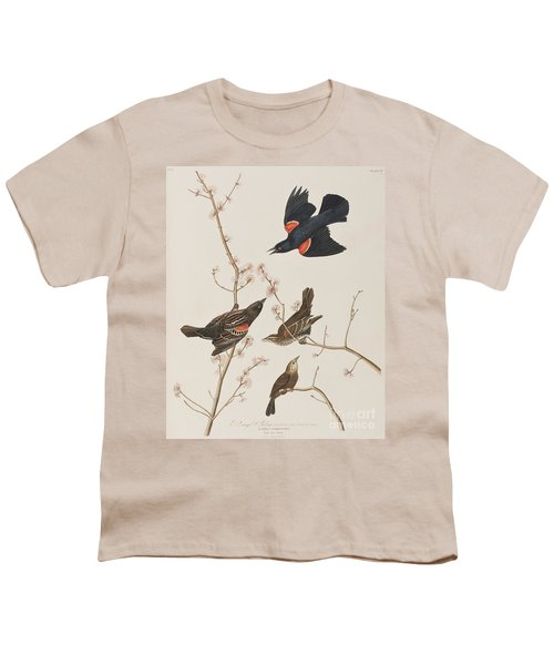 Red Winged Starling Or Marsh Blackbird Youth T-Shirt by John James Audubon