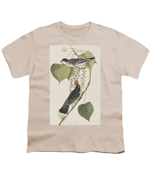 Tyrant Fly Catcher Youth T-Shirt by John James Audubon