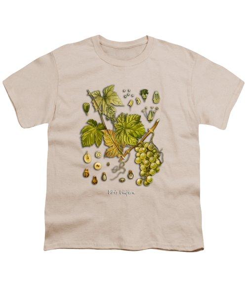 Vitis Vinifera Youth T-Shirt by Justyna JBJart