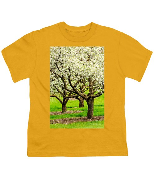 Apple Blossoms Youth T-Shirt by Joe Mamer