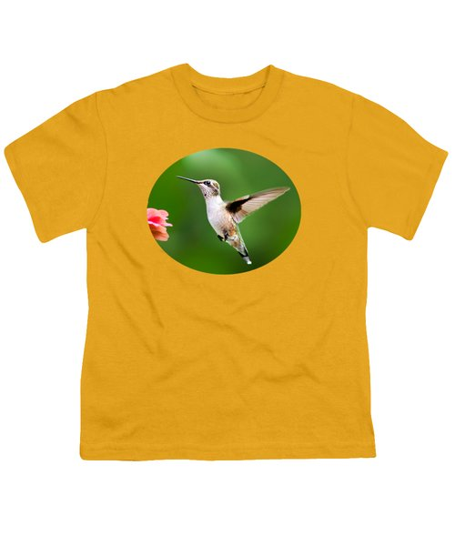 Free As A Bird Hummingbird Youth T-Shirt by Christina Rollo