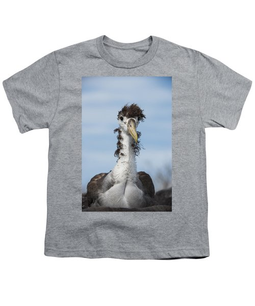 Waved Albatross Molting Juvenile Youth T-Shirt by Pete Oxford