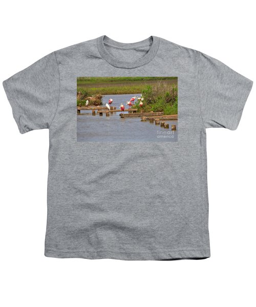 Roseate Spoonbills And Snowy Egrets Youth T-Shirt by Louise Heusinkveld