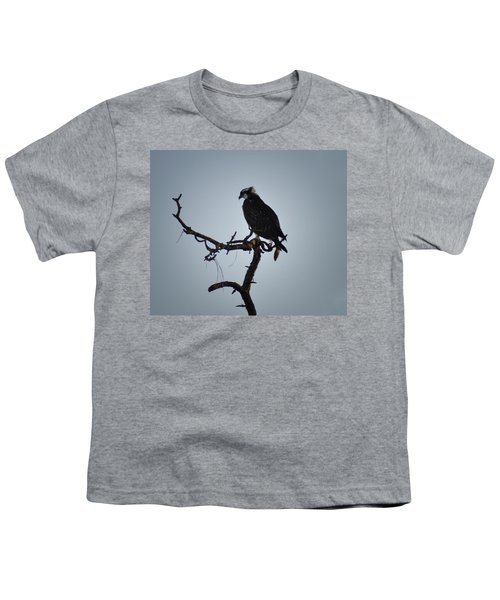 The Osprey Youth T-Shirt by Bill Cannon