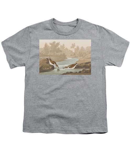 Little Sandpiper Youth T-Shirt by John James Audubon