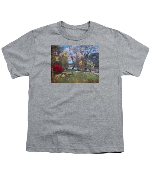 Mixed Weather In A Fall Afternoon Youth T-Shirt by Ylli Haruni