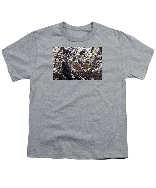 Snake In The Shadows Youth T-Shirt by Chuck Brown