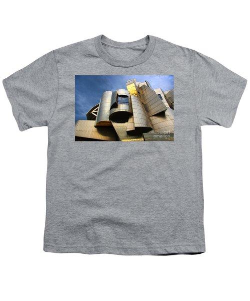 Weisman Art Museum University Of Minnesota Youth T-Shirt by Wayne Moran