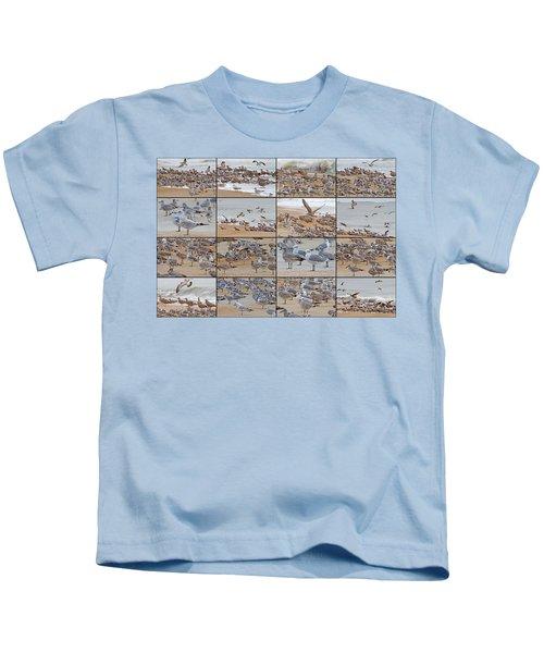 Birds Of Many Feathers Kids T-Shirt by Betsy Knapp