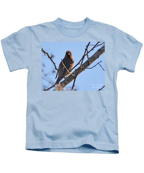 Cedar Wax Wing On The Lookout Kids T-Shirt by Barbara Dalton