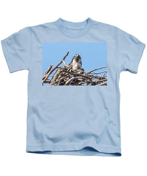 Osprey Eyes Kids T-Shirt by Paul Freidlund