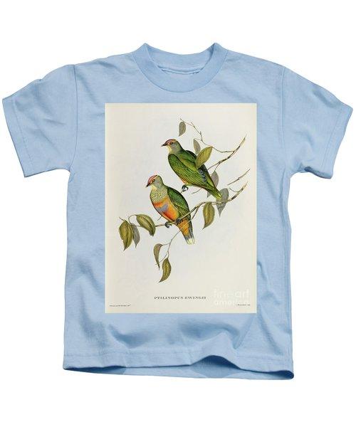 Ptilinopus Ewingii Kids T-Shirt by John Gould