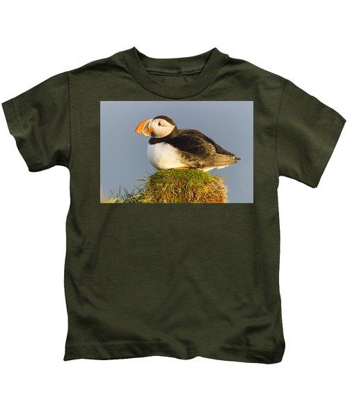 Atlantic Puffin Iceland Kids T-Shirt by Peer von Wahl